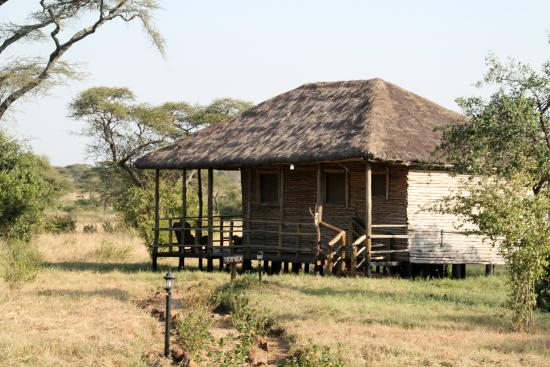 Ikoma Safari Camp: Kamer