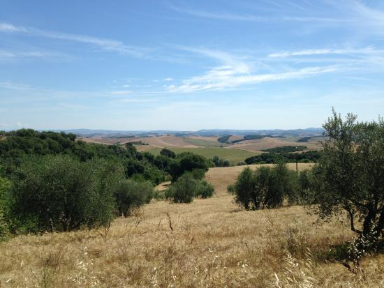 Albergo di Murlo: The countryside around the hotel is absolutely breathtaking.