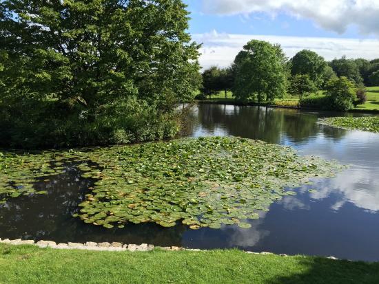 Kendal, UK: photo3.jpg