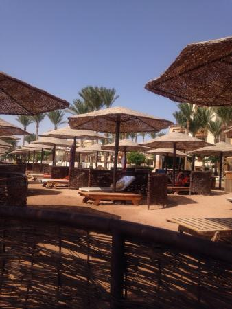 The Makadi Palace Hotel: Xxx