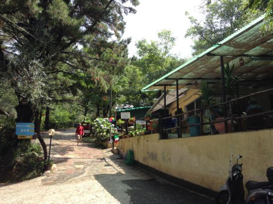 Camping San Michele