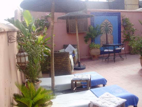 Riad Les Lauriers Blancs: autre vue de la terrasse