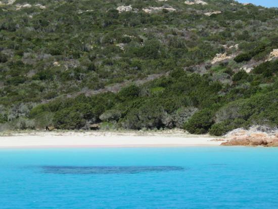 Clubviaggi Resort Santo Stefano: spiaggia spargi