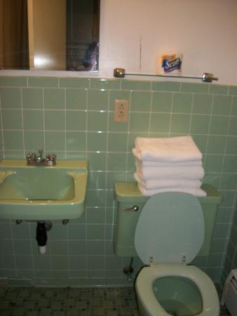 Red Carpet Inn Grand Island: stained towels and broken sink