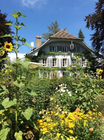Auberge Aux 4 Vents: View from the garden