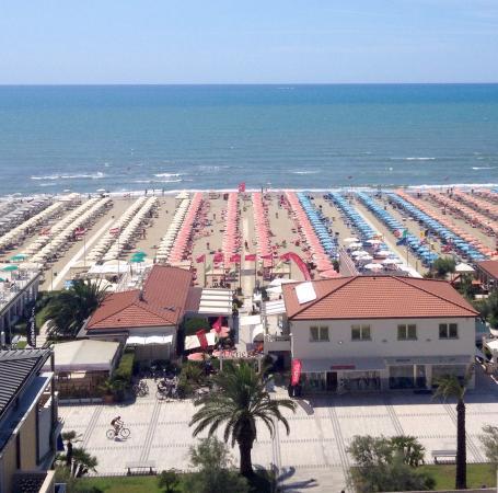 Insalata di polpo picture of bagno venezia lido di - Bagno onda lido di camaiore ...