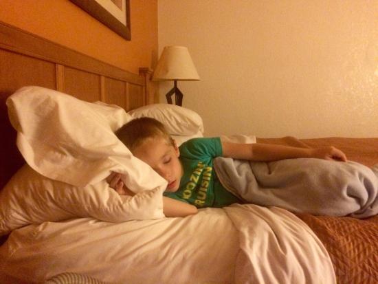 Travelodge Muskegon: Sleepy head!