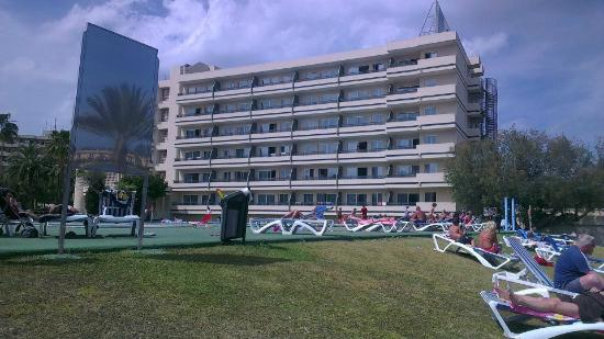 Apartment - Picture of BelleVue Club, Port d'Alcudia ...