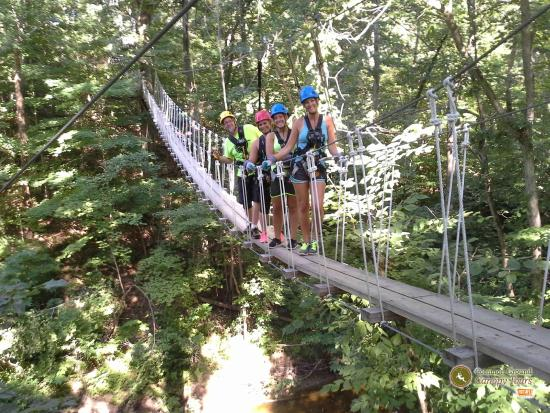 Common Ground Canopy Tours: one of the sky bridges!