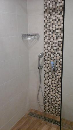 Luna Hotel: shower