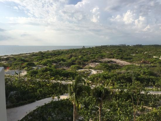 Landscape - Secrets Playa Mujeres Golf & Spa Resort Photo
