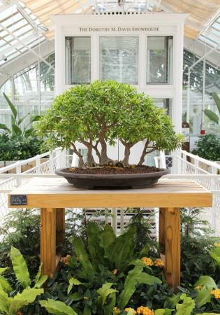 Franklin Park Conservatory And Botanical Gardens (Columbus)   All You Need  To Know Before You Go (with Photos)   TripAdvisor