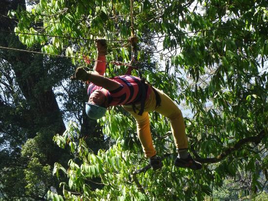 Fun Forest Adventure Park: -