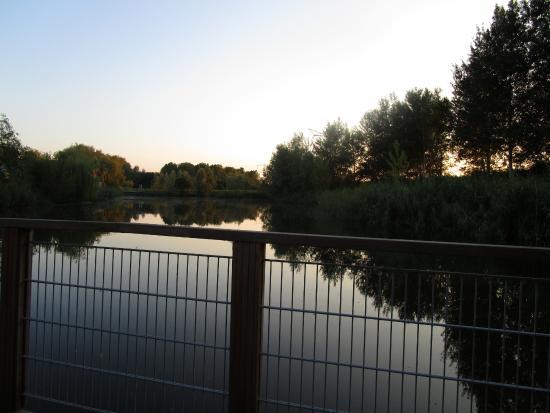 Waterlodge de Aalscholver : view from room