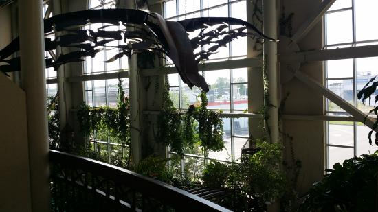 Hotel L'Oiseliere - Levis: balcony view
