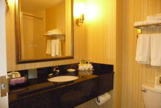 Holiday Inn Express Hotel & Suites Malone: Bathroom