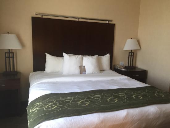 Comfort Suites Turlock: photo4.jpg