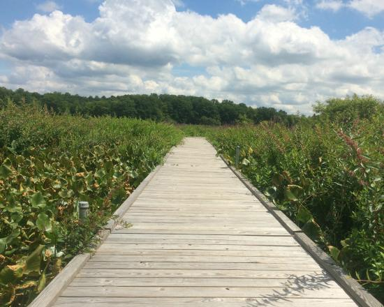 Punderson Manor Lodge and Conference Center: Punderson Manor - boardwalk through marsh