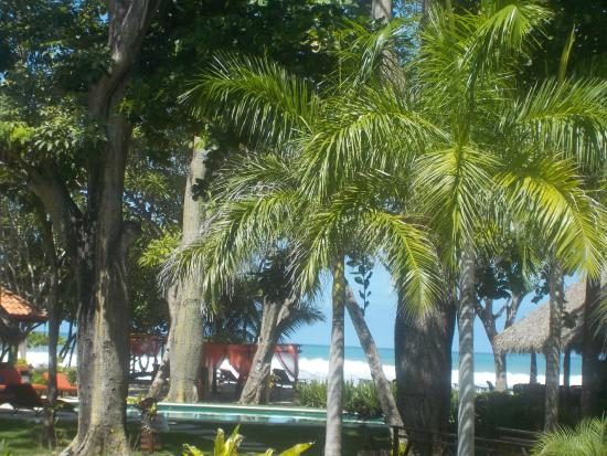 Playa Cielo: View from the room:)
