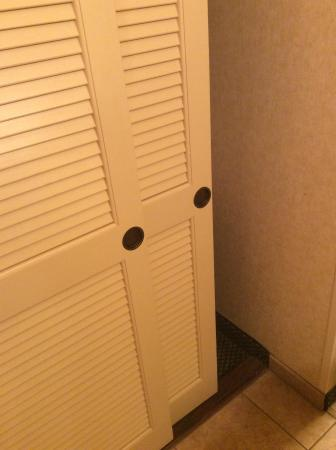 Red Lion Hotel Kelso/Longview: Little difficult to get in the closet