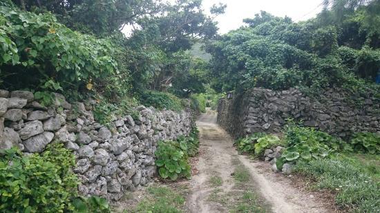 Aden Village