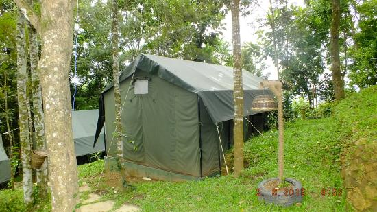 Season7 The Nature Resort African safari tents & African safari tents - Picture of Season7 The Nature Resort ...