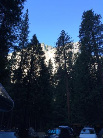 Upper Pines Campground : photo1.jpg