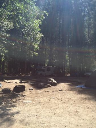 Upper Pines Campground: photo2.jpg