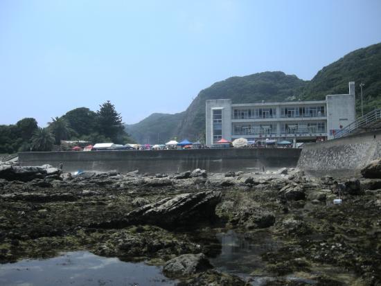 Futomi Flower Surf Fishing Center : 磯からセンター望む