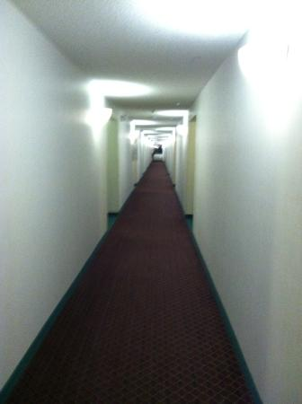 Days Inn and Suites Sequim: Hallyway
