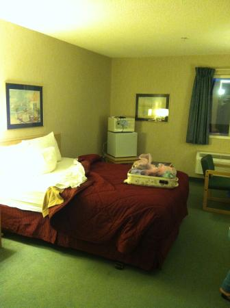 Days Inn and Suites Sequim: Room