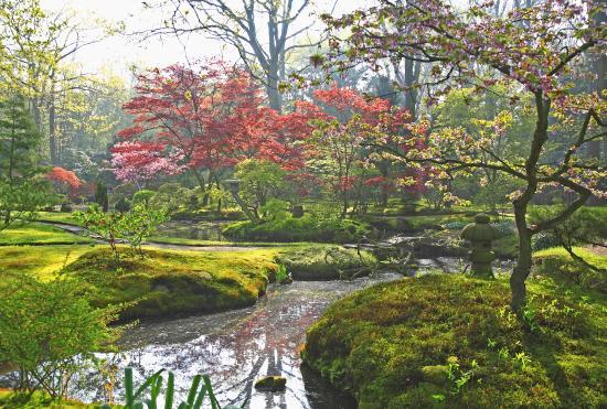 Japanese Garden : Jardín japonés de Clingendael Park