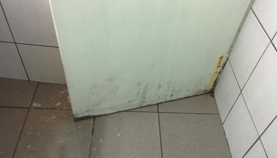 Elsa Hotel: Bathroom door
