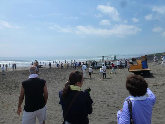Shirako Beach: さあ 今から網を海に入れるぞう!