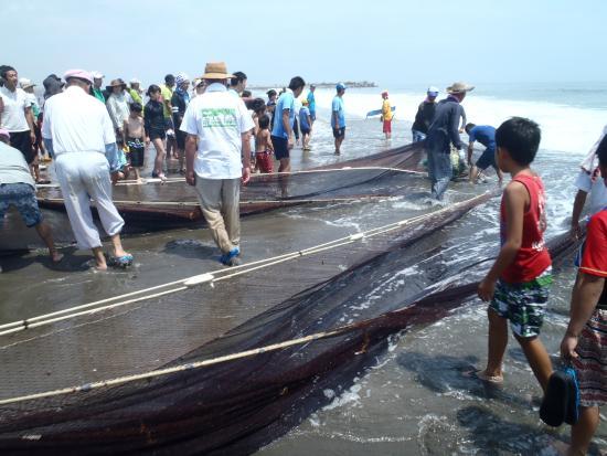 Shirako Beach: いつもなら網の周りが白くぎらぎらと光り、ピチピチはねているはずの魚たちがいない、