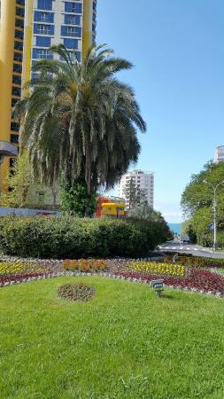 Sochi-Breeze Spa Hotel: Окрестности отеля