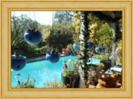 Pindari House : POOL VIEW FROM MONTY'S BAR