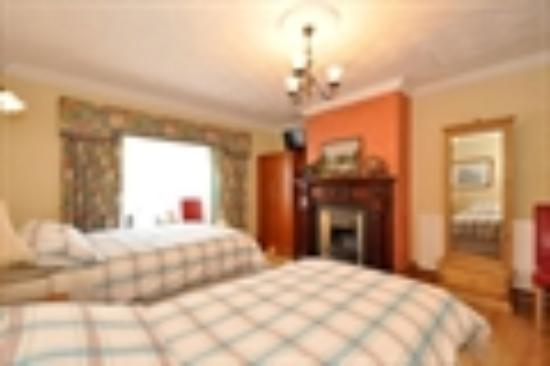 Lynfield B&B : Twin Room