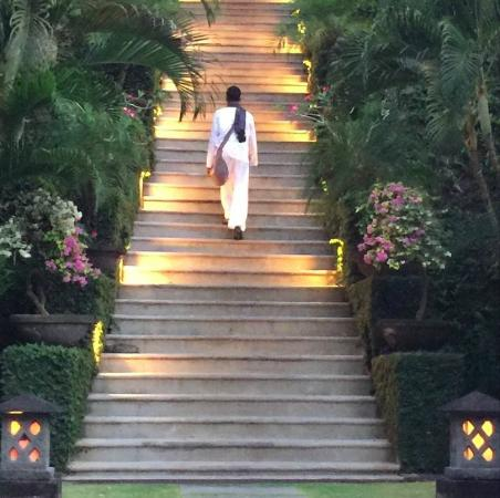 Sukhavati Ayurvedic Retreat and Spa : Our yogi Guru Ji going home after evening yoga