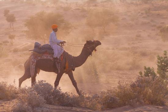 Sam, Indien: desert safari