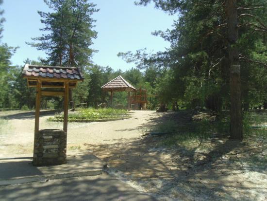 Enerhodar, أوكرانيا: парк