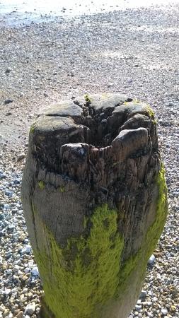 Earnley, UK: Erosion of the Waves.