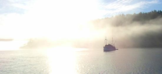 Kruger Escapes : A foggy morning sunrise