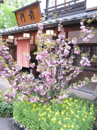 Monzen: 花に囲まれています