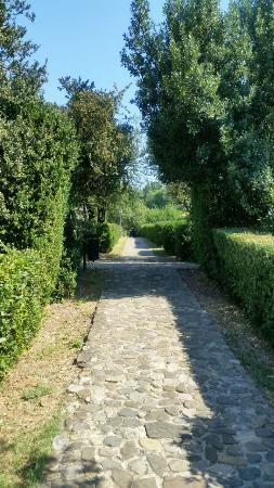 Badia Di Campoleone: Viottolo che porta alla piscina ed al tennis
