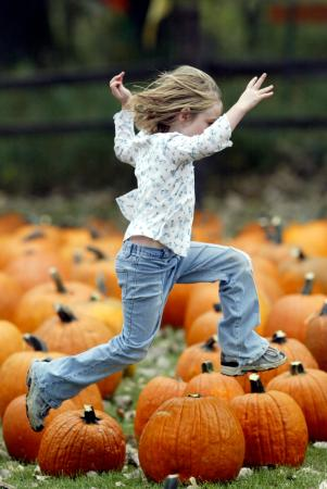 Papa's Pumpkin Patch: Punkin' Jumpin'