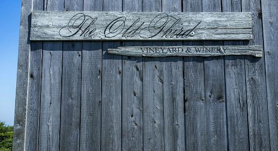 The Old Third Vineyard