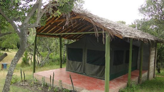 Rhino Tourist Camp: Tented Camp
