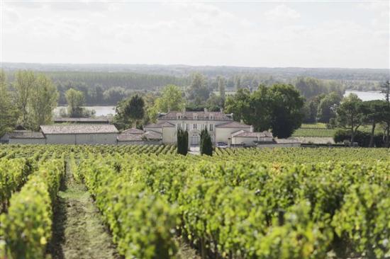 Château de La Dauphine: Vue panoramique sur la propriété
