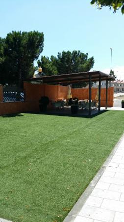 Hotel Alhama: Zona Ajardinada en Terraza y Parque Infantil